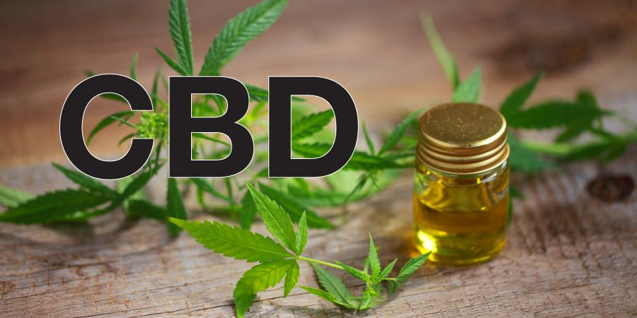 CBD balance oil perks in treating malignancy